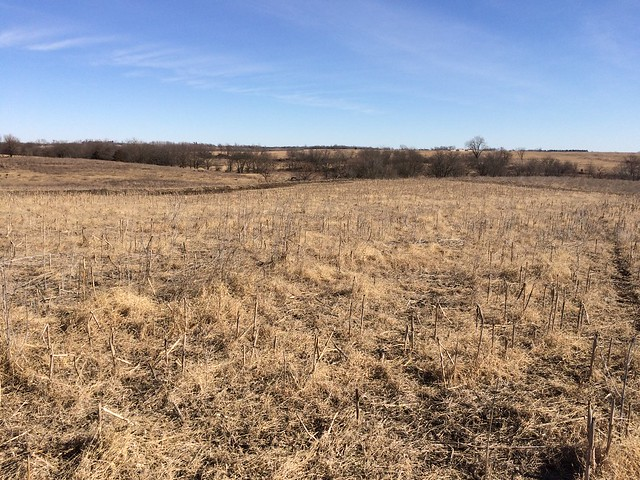 Iowa Land for Sale - 4,727 Listings | Land and Farm