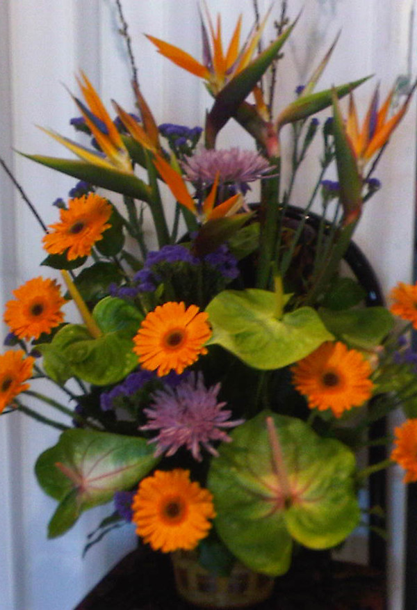 Farah Florist W-A-26.  $120-150