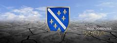 Moja jedina domovina zove se Bosna