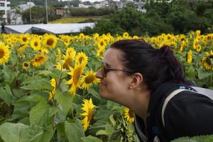 Himawari Festival: Smelling The Flower - Okinawa, Japan