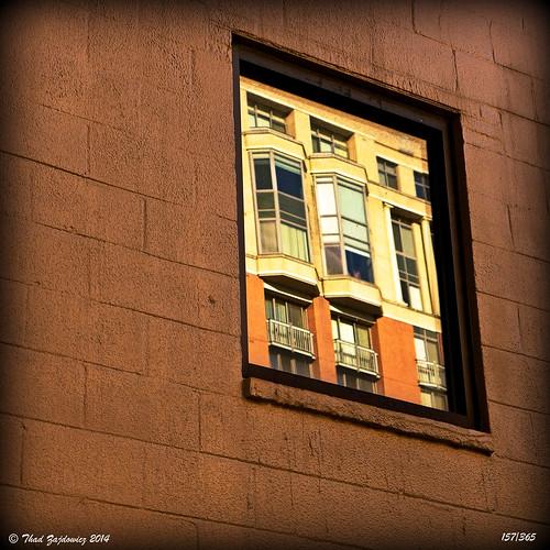 window wall building architecture reflection earth 365 bethesda maryland zajdowicz light shadow picasa vignette leica