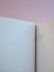 Come finisce il libro, di Alessandro Gazoia (Jumpinschark). minimum fax 2014. Progetto grafico di Riccardo Falcinelli. Verso della carta di guardia posteriore e verso della q. di cop. (part.), 1