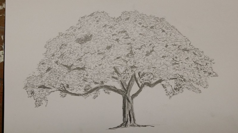 Tree from drawing class