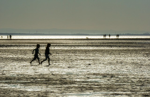 Playing on mudflat