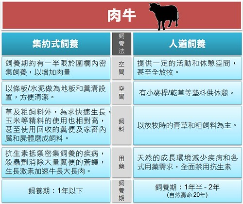 肉牛比較(耿璐製圖)