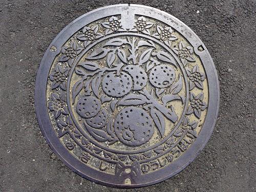 Aki Kochi, manhole cover 4 (高知県安芸市のマンホール4)