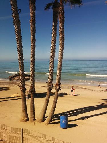 ocean california beach train view pacific