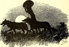 "Image from page 143 of ""The jungle book"" (1894)"