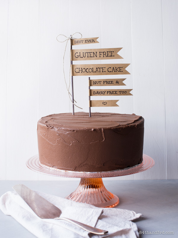 Best Ever Gluten Free Chocolate Cake (Dairy Free, Nut Free & Probably Paleo too)