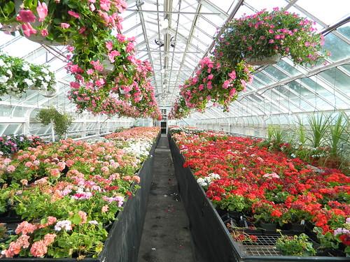Keil Greenhouses