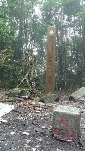20140809-橫嶺山步道 (36)