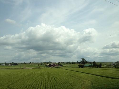 Driving in Hokkaido