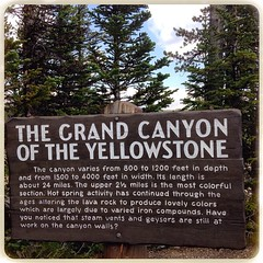 The Grand Canyon of the Yellowstone, Yellowstone National Park, WY