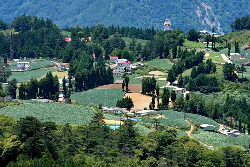 福壽山農場。圖片來源:Martin Chen