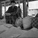 People in Bhutan 33