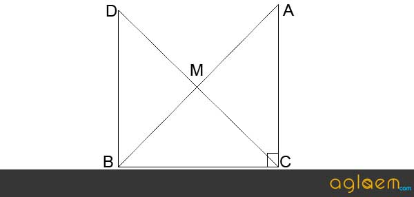 CBSE Sample Paper