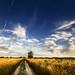 Hungarian skies pt.LVII.