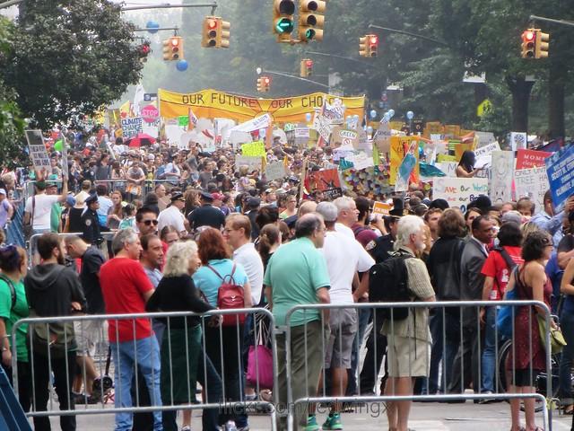Crowds1
