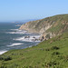 Small photo of Tomales Point Trail