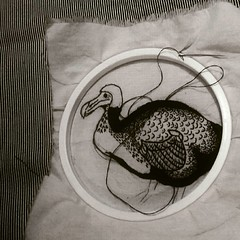 Aves en hilos chan chan chan
