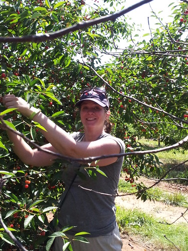 Sarah Picking Cherries