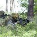 173rd Airborne Brigade conducts live fire exercise in Poland by U.S. Army Europe