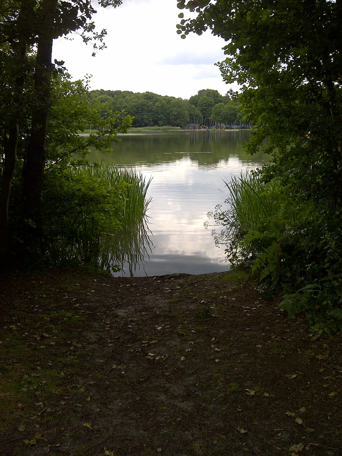 Waverley-20140623-00387 Frensham Great Pond
