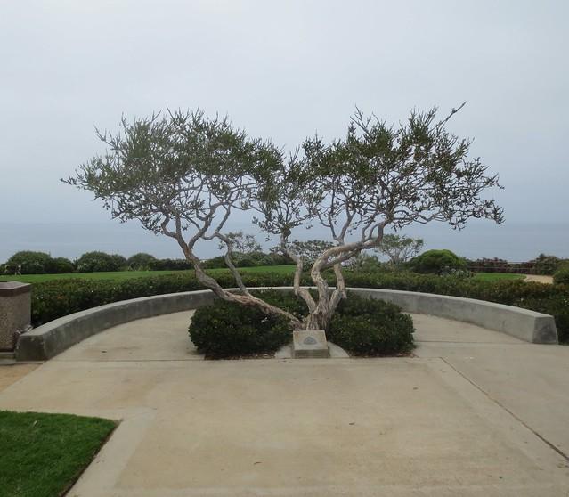 Crescent Bay Point Park, Laguna Beach