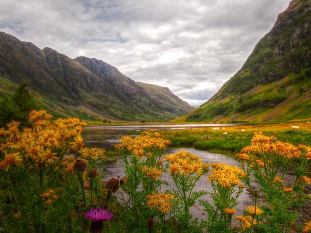 Шотландское нагорье loverme