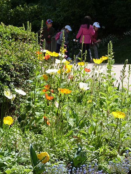 enfants au jardin des plantes
