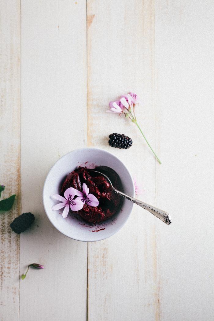 Blackberry Cabernet Sorbet - Michelle Lopez