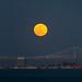 Full moon - San Francisco by davidyuweb