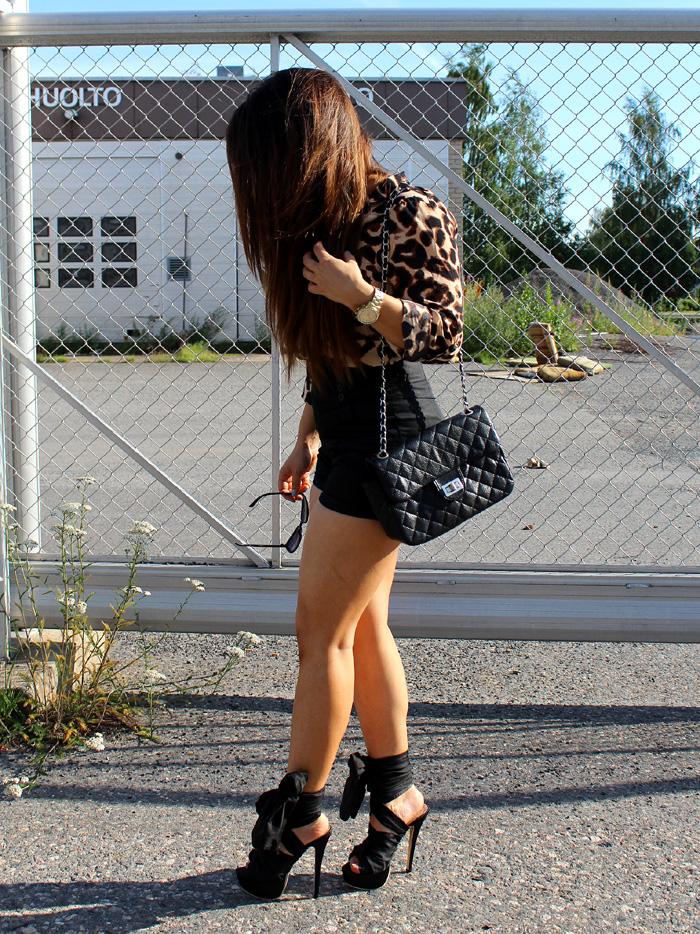 leopard 046
