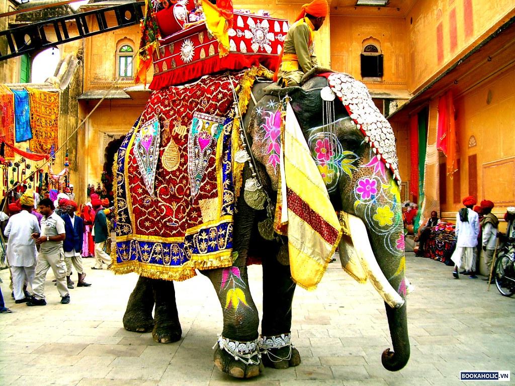 Elephant Festival - Jaipur, India