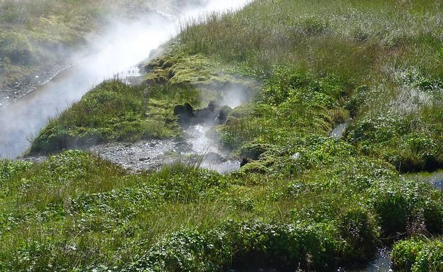 streams at deildartunguhver