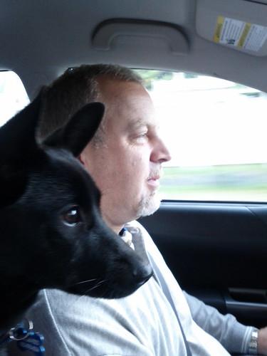 dog_copilot