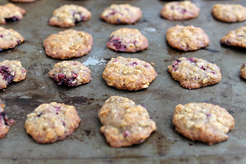 Blackberry Coconut Oatmeal Cookies, vegan | http://www.katesshortandsweets.com