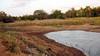 Rambewa Lake