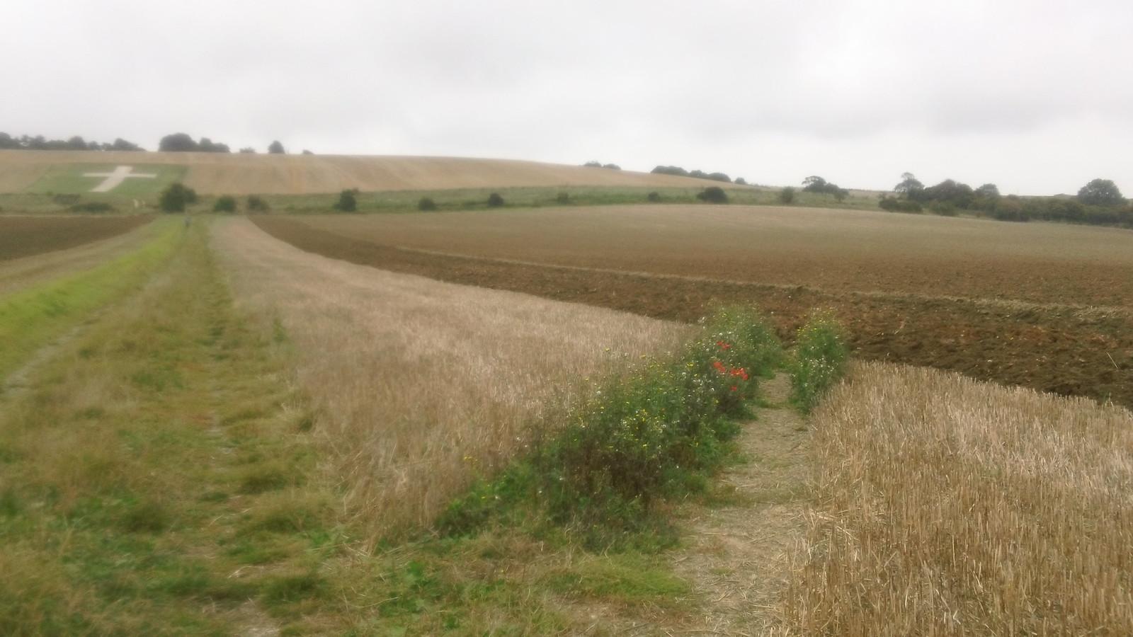 ...farmer gets a ploughed field Near Lenham, Kent