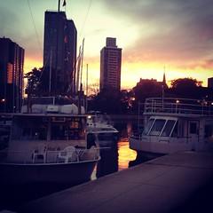 Gorgeous sunset Chicago! #belmontharbor