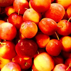 Crab apples are here!!!
