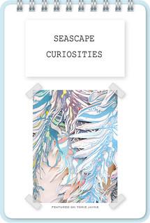 Seascape Curiosities
