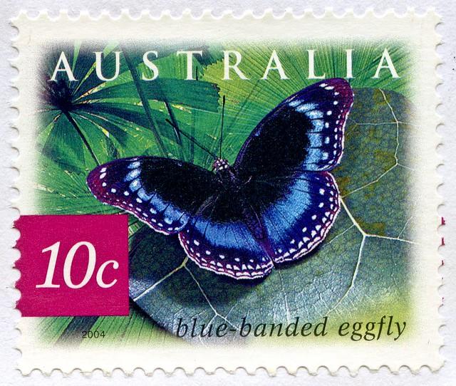 beautiful stamp Australia 10c Blue-banded Eggfly (Hypolimnas alimena) postzegel Australië postes timbre Australie γραμματόσημα Αυστραλία bélyeg Ausztrália 切手 オーストラリア почтовые марки Австралия perangko Australia 55c frimärke frimærker frimärken 邮票 澳大利亚 Aust