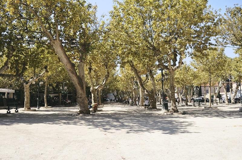 Cote d'Azur_2013-09-05_047