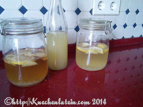 ©Ginger-Root-Plant-. Champagnerhefe- und Wasserkefir-getränk