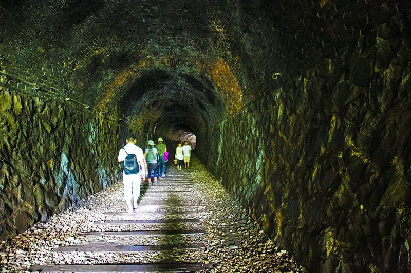 武庫川渓谷廃線ハイキング(生瀬ー武田尾)565
