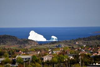 Iceberg June 18