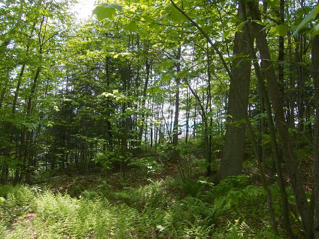 Kent's Ledge, South Royalton, Vermont