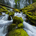 Proxy Falls by Ryan Engstrom Photography