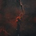 IC 1396 Mosaic by John.R.Taylor (www.cloudedout.squarespace.com)